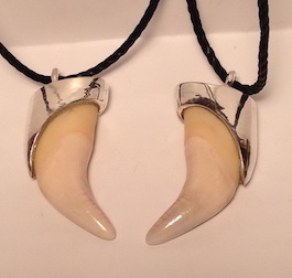 Capped Claws-Teeth Pendants - Pen9q Black bear tooth cap in silver
