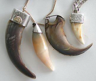 Cast Pendants - Pen9m,n,p and q Capped Teeth and claws, Grizzly Black bear tooth, black bear claw and wolf tooth