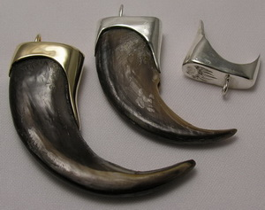 Silver Capped Teeth
