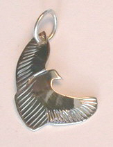 Bird-Feather Pendants - Pen19 - Hawk