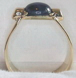 Non-Native Rings Stones - NNrcSt3 - Star Sapphire set in b